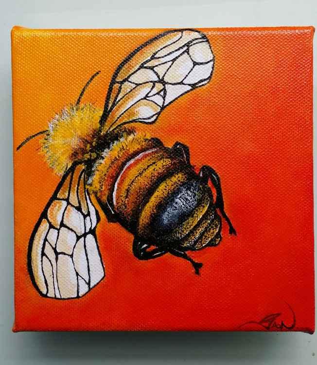 Bee licious -