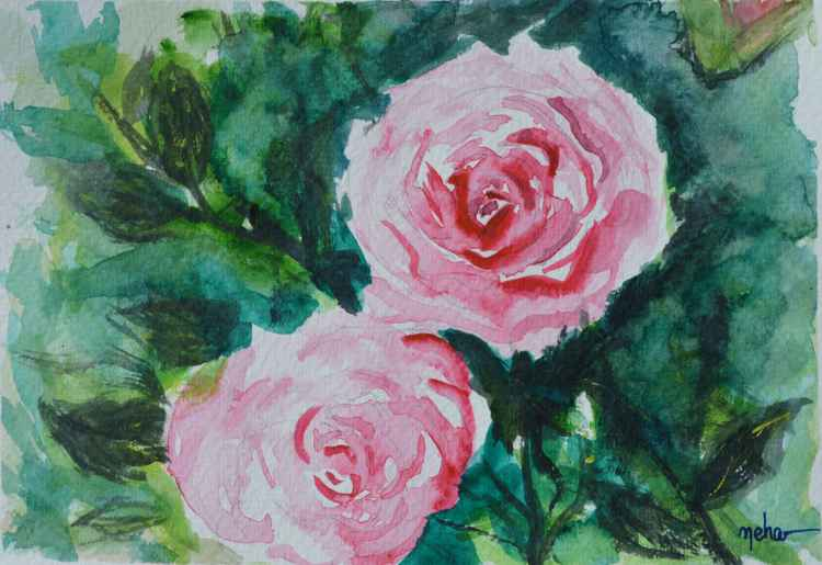 A pair of pink roses -