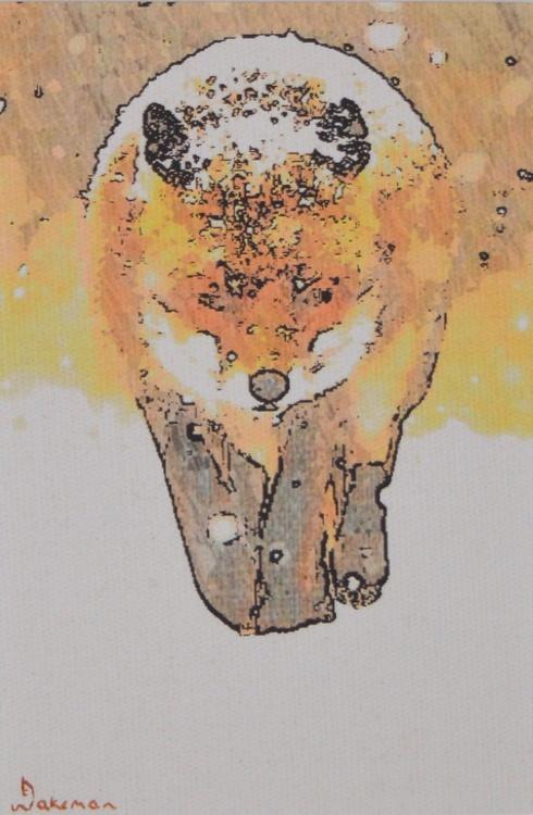 Fox Walking - Image 0