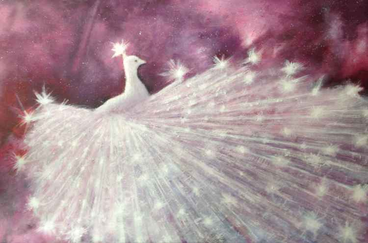 White Peacock -