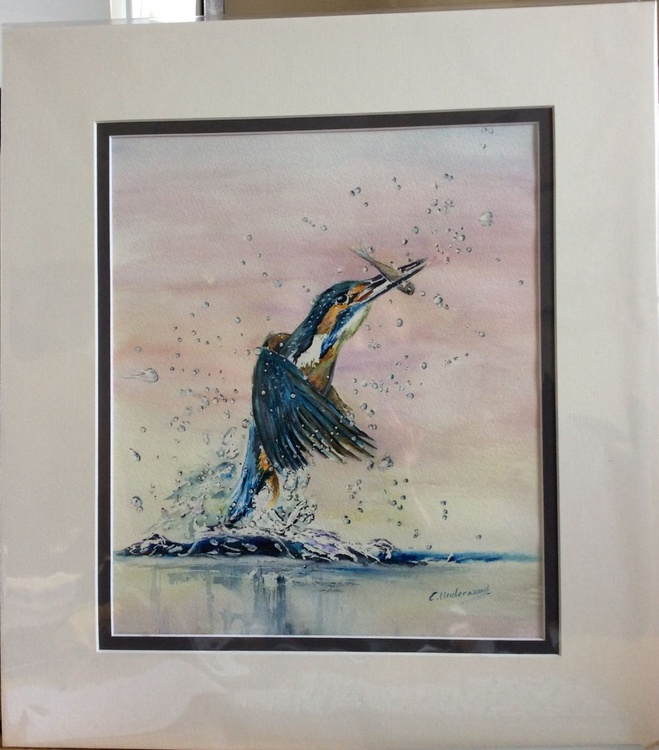 kingfishers catch - Image 0