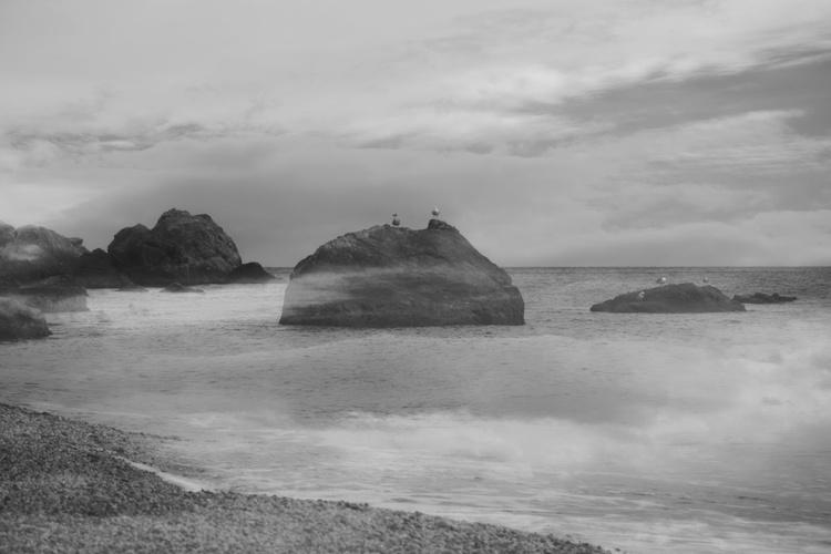 Fog on the sea - Image 0