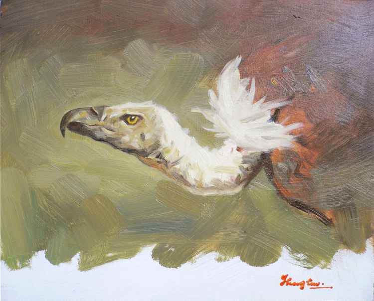 Original Oil paintingl animal art  VULTURE on board  #16-4-18-05 -