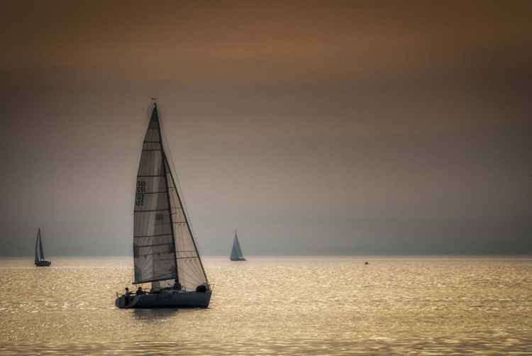 Regatta on the lake of Genova