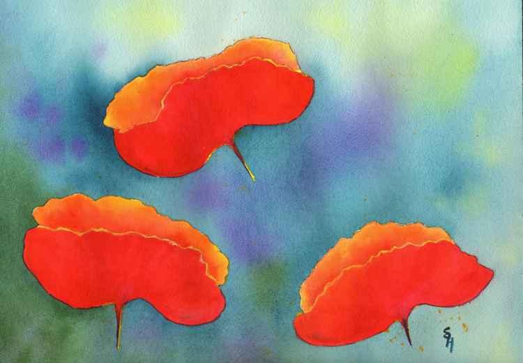 Summer Poppies -