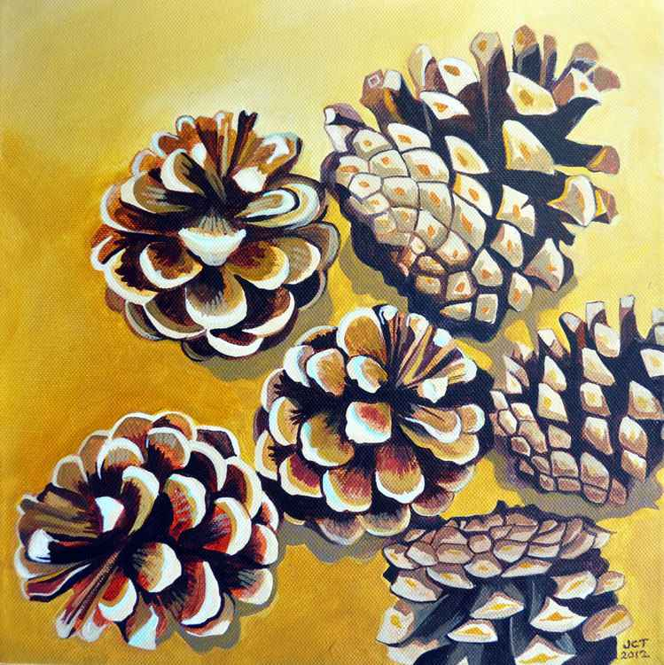 Pine cones -
