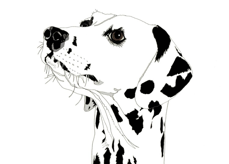 Dotty Dog - Image 0