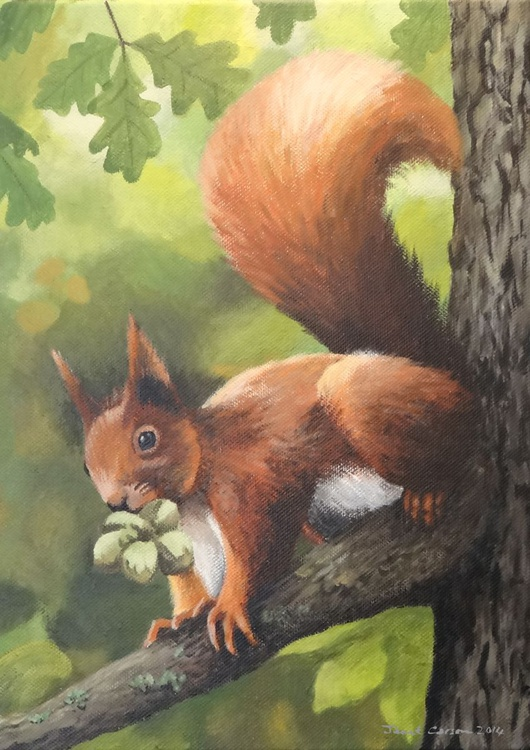 Nuts Oh Hazelnuts - Image 0