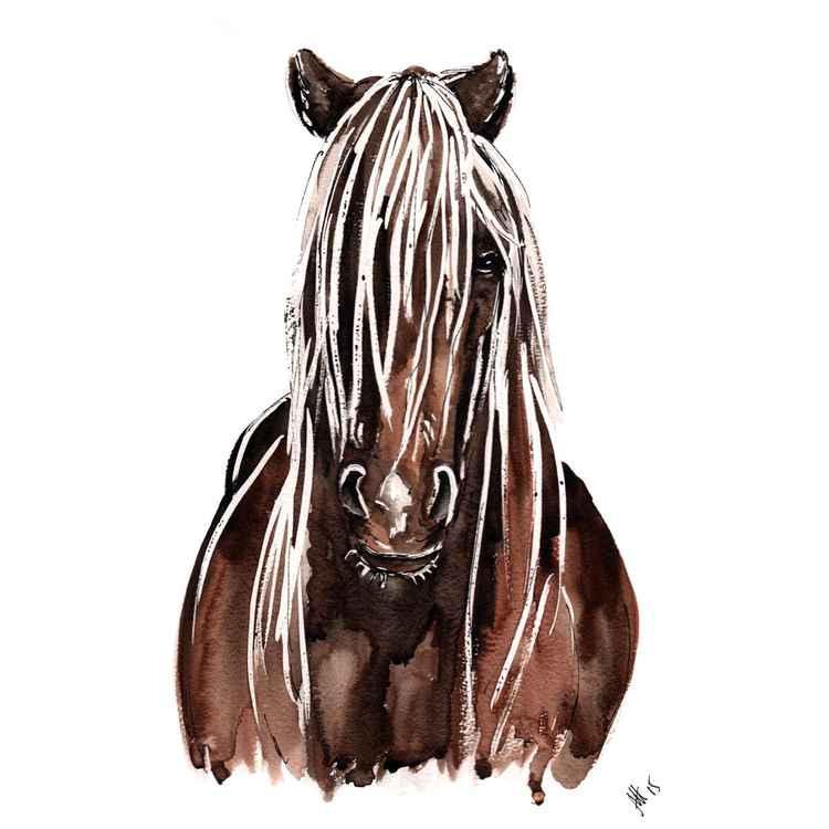 HORSE 1 -