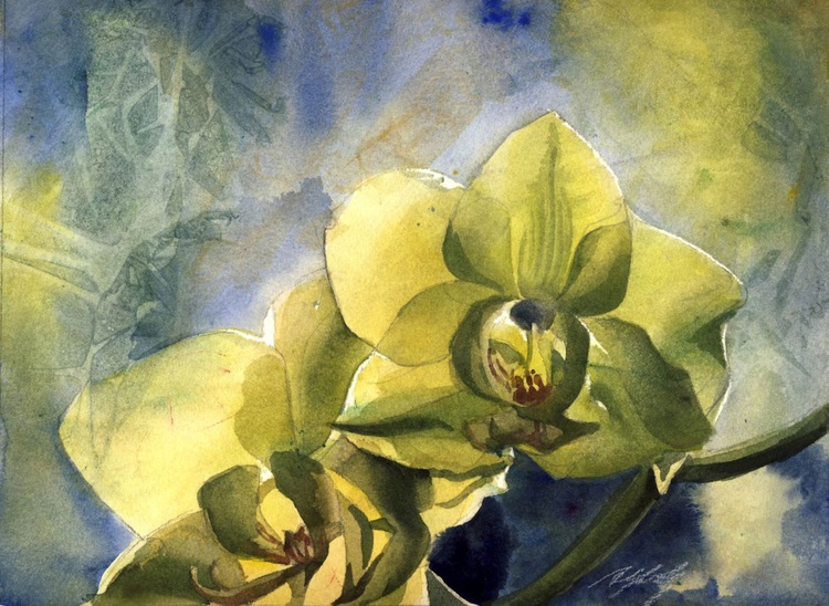 yellow orchid with blues - Image 0