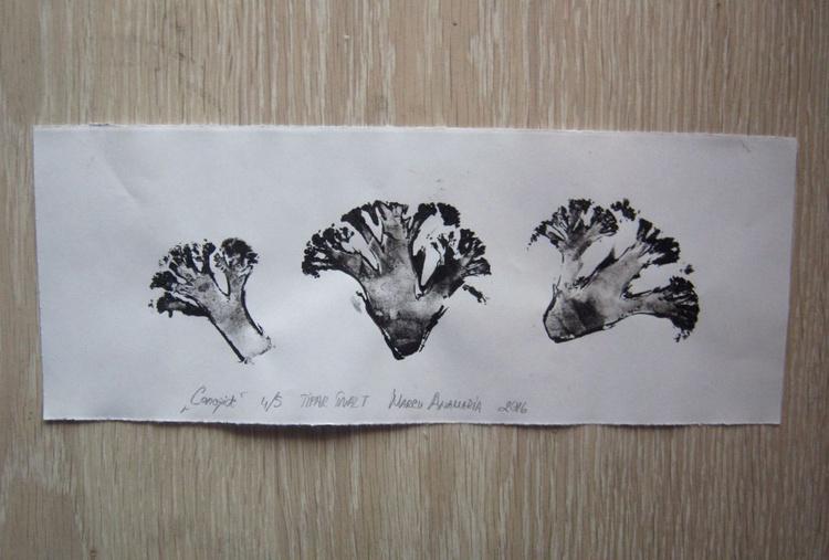 The Cauliflowers - Image 0