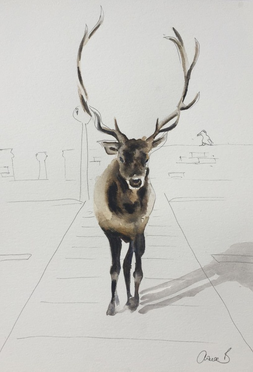 Elk Crossing - Image 0