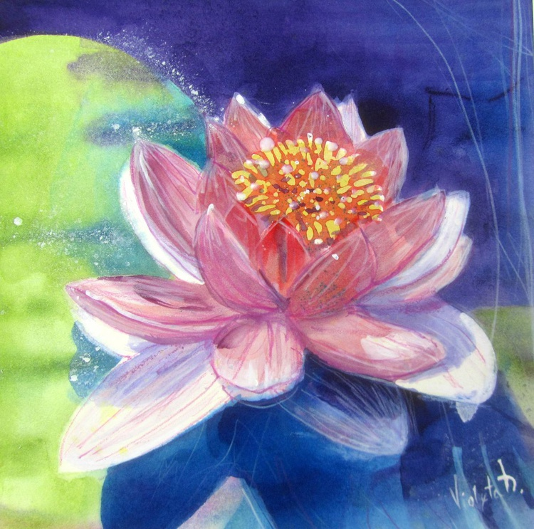 Waterlily 3 - Image 0