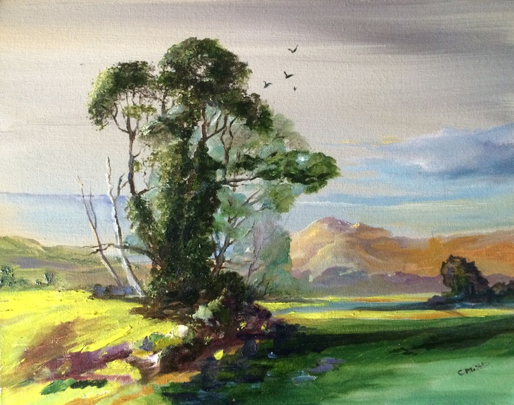A Devonshire's Summer view - Image 0