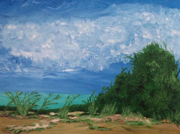 Grassy Beach - Image 0
