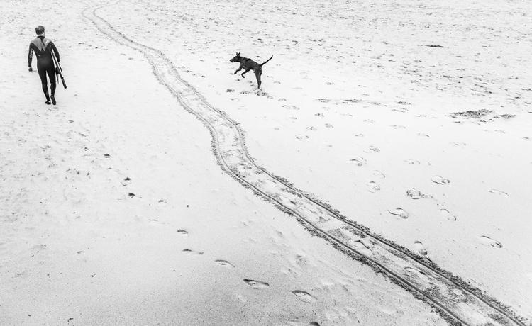 SURFER WITH DOG - Image 0