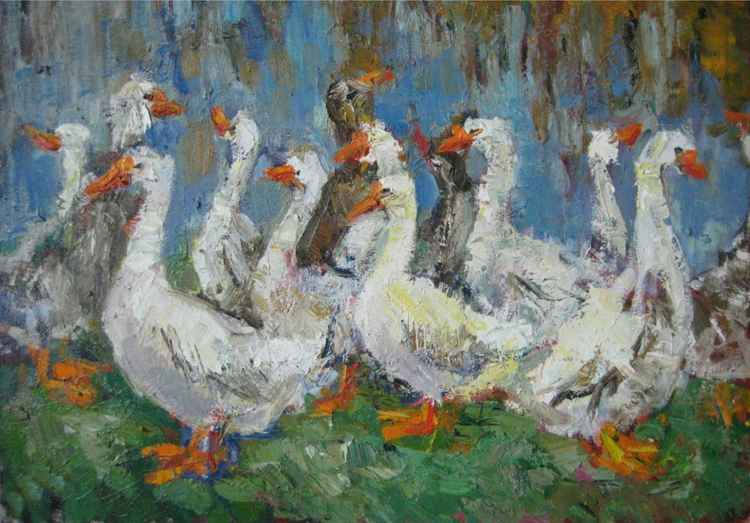 Geese -