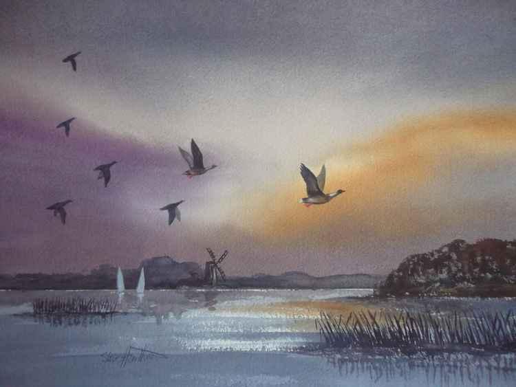 Geese   on Breydon Water, Norfolk