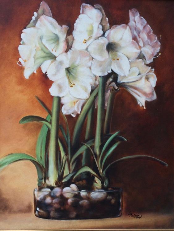 White Amaryllis - Image 0