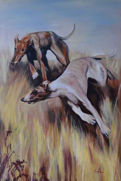 Frolicking Greyhounds -