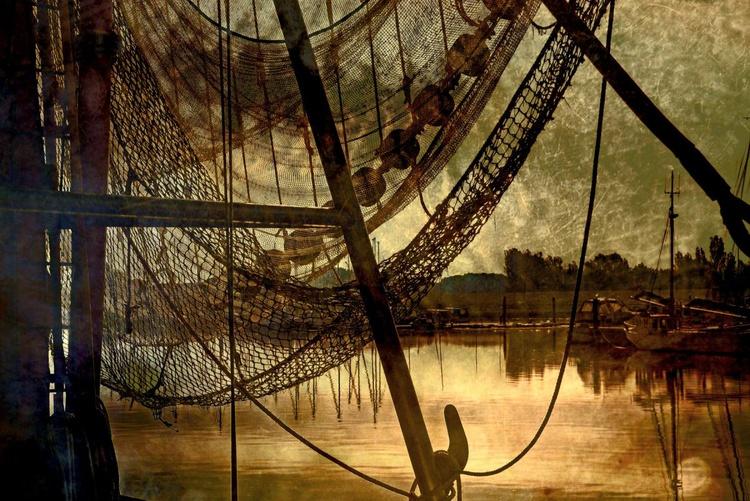 Catching the Light II - Canvas 75 x 50 cm - Image 0