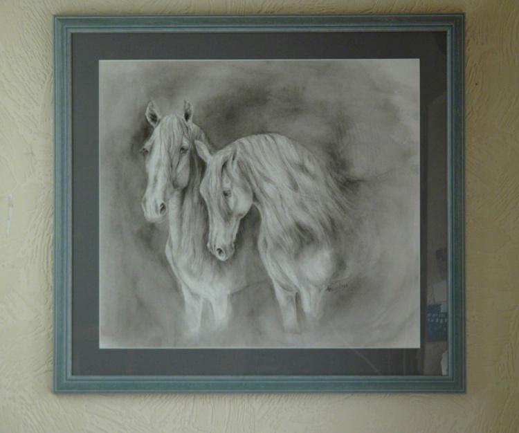 Andalusian Greys - Image 0