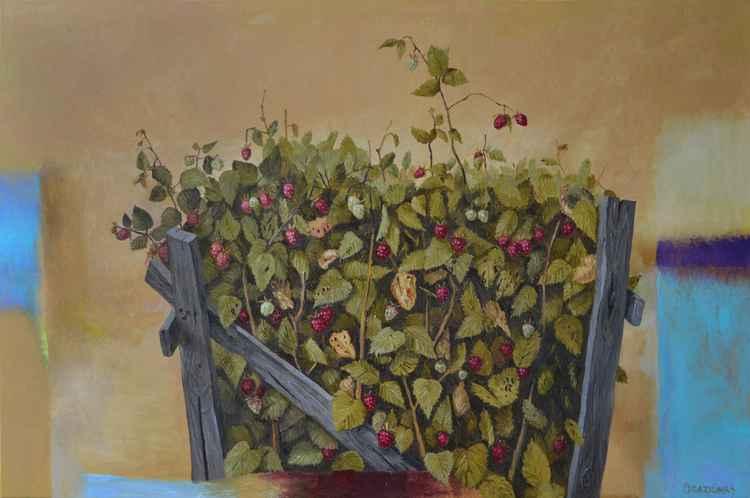 Raspberries -