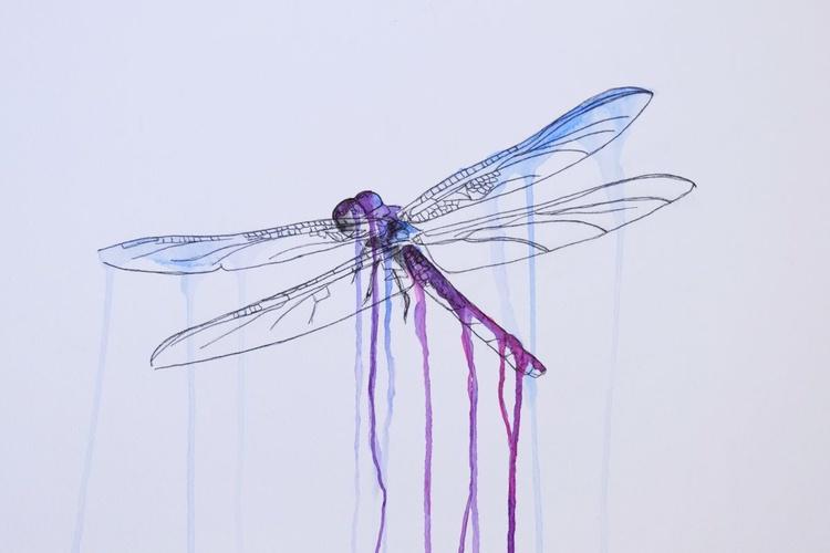 Flighty Dragonfly - Image 0