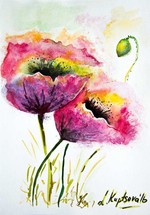 Two poppies - Image 0