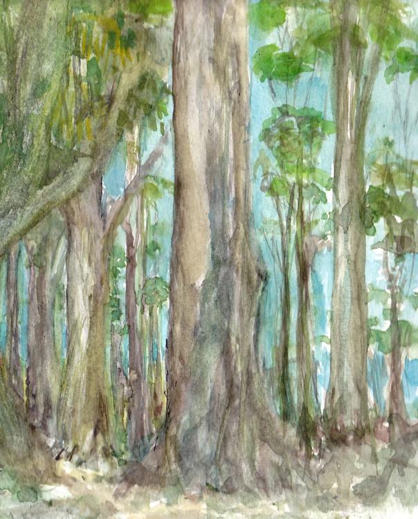 Big Gums - Eucalyptus Forrest - Image 0