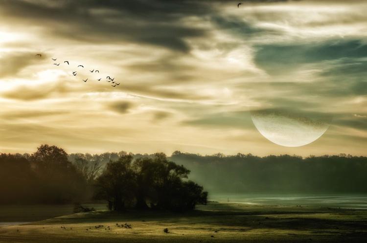 Twilight - Image 0