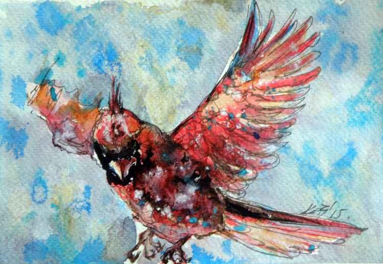 Flying cardinal -