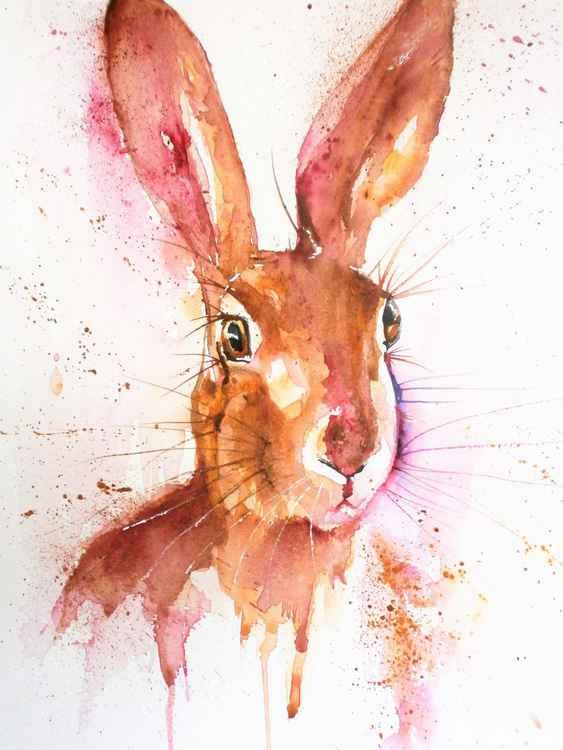 Pretty Hare