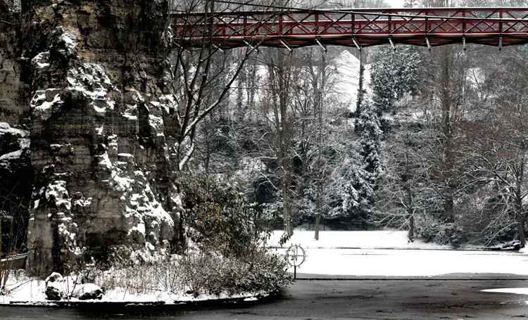 White Christmas 04L -