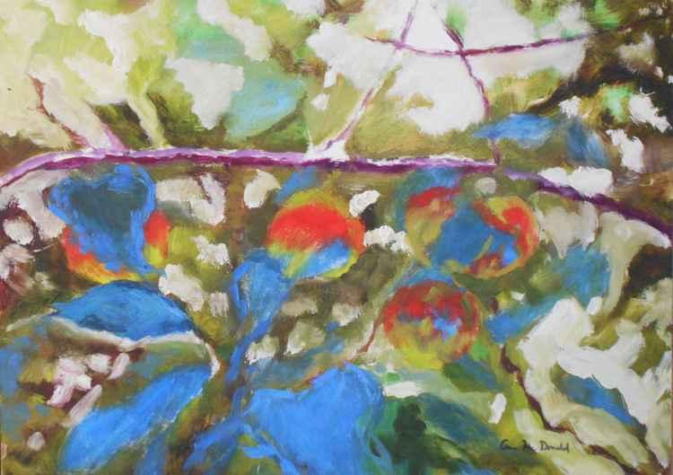 Apples on Michigan Tree Branch
