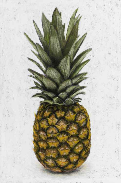 "Original pastel drawing ""Pineapple"" -"