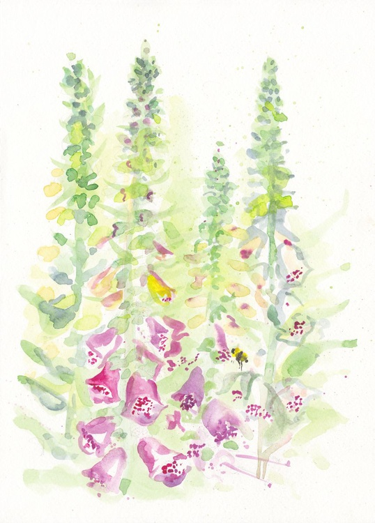 Foxgloves and Bumble Bee - Image 0