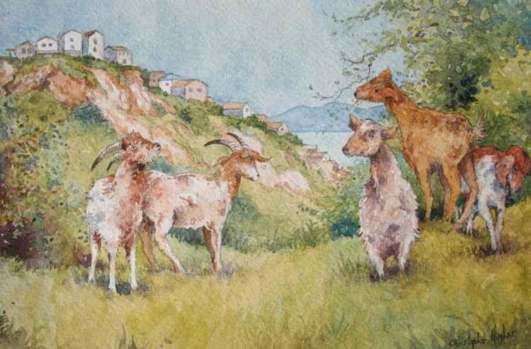 Greek Goats -
