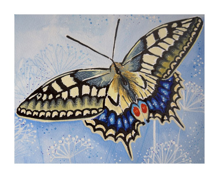Swallowtail - Image 0