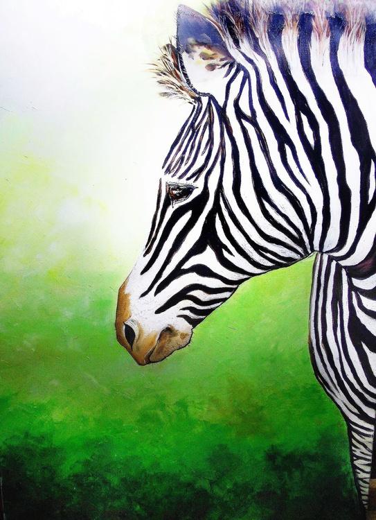Zebra 50x70 cm ORIGINAL OIL PAINTING ON CANVAS GIFT IDEA HOME OFFICE WALL DECOR ANIMAL - Image 0