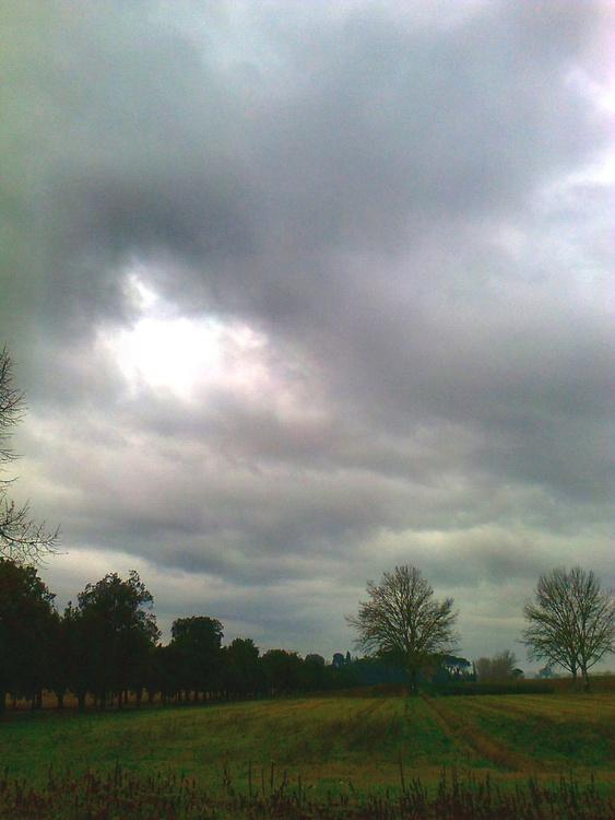 Winter field - Image 0