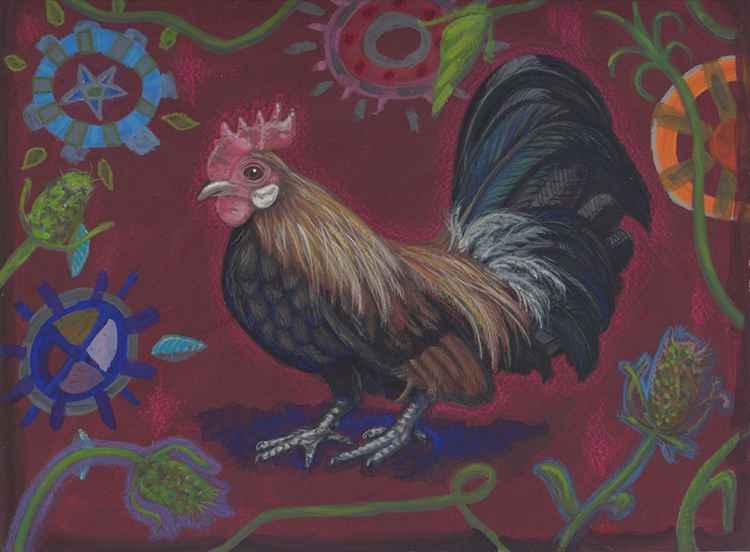 Dutch Bantam rooster portrait -