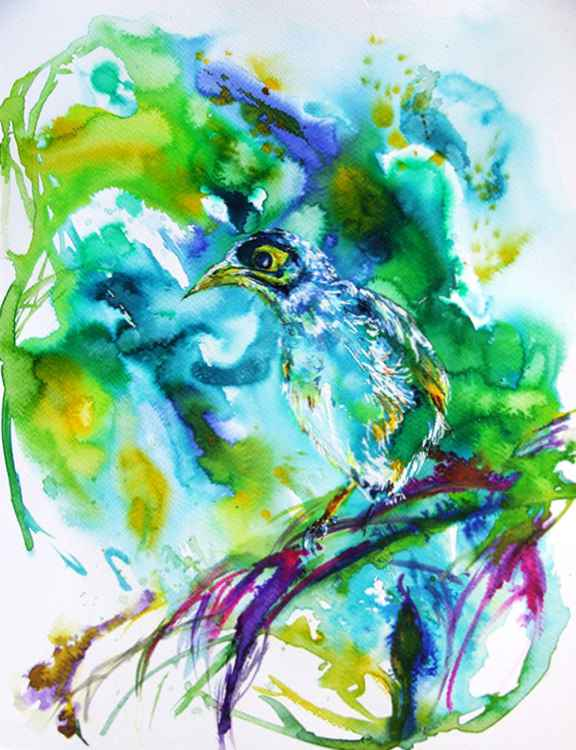 Noisy bird/ Watercolour -