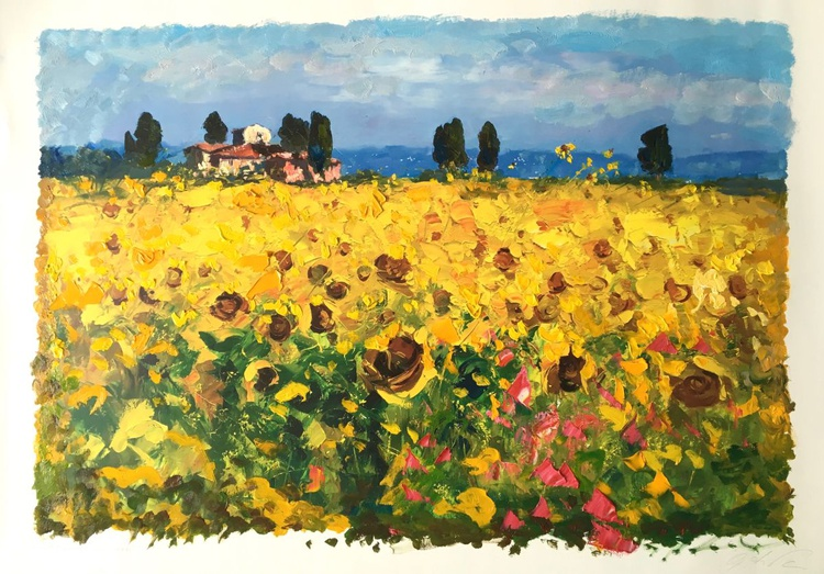 Field of Sunflowers in Tuscany - Image 0