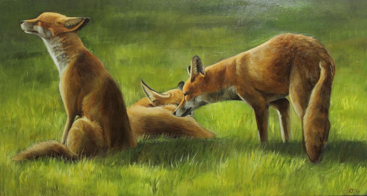 Foxes in the Sun Vol 1 - Image 0