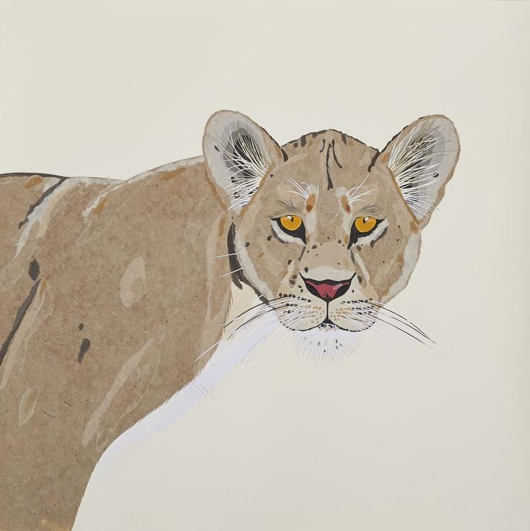 Lioness - Image 0