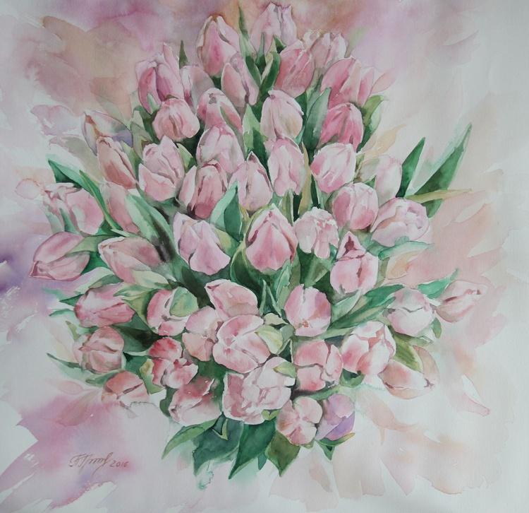 Blush tulips - Image 0