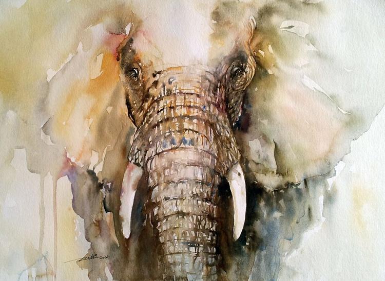 Amber Elephant - Image 0