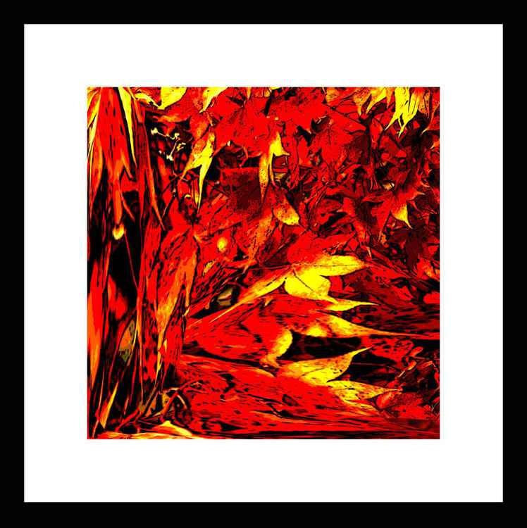 Natural Abstracts - Autumn Leaves number 1 - Mini -