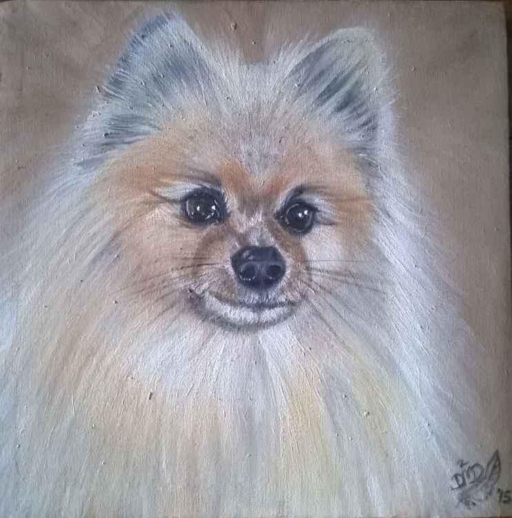Pomeranian 3 - Commission -